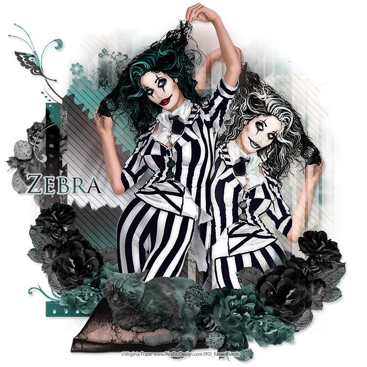 132_Zebra.jpg